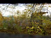 Through the fence along the back service road, 19/11/04.